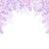 与淡紫色花的背景 也corel凹道例证向量 库存例证