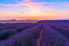 与淡紫色领域的惊人的风景在日落 库存图片