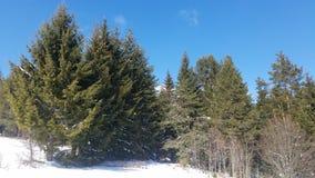 与深蓝天的雪山 喀尔巴阡山脉,乌克兰,欧洲 库存图片