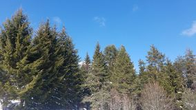 与深蓝天的雪山 喀尔巴阡山脉,乌克兰,欧洲 库存照片