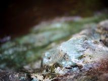 与混凝土和石头地板的瀑布表面在一个热带庭院里 库存照片