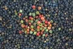 与混合的背景黑胡椒辣传统调味料以子弹密击桃红色白色明亮的斑点 库存图片