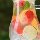 与混合茶点鸡尾酒的玻璃水瓶 免版税图库摄影