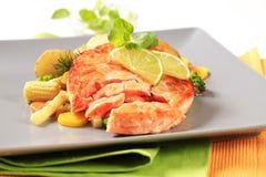 与混杂的菜的三文鱼小馅饼 图库摄影