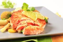 与混杂的菜的三文鱼小馅饼 免版税图库摄影