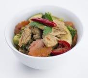 与混杂的菜的泰国鸡辣椒蓬蒿 免版税库存照片