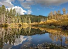 与清楚的反射的美妙的秋天颜色 库存图片