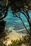 与清楚的大海的一个狂放的海滩,在可西嘉岛 免版税库存照片