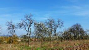 与清楚的天空蔚蓝和白色云彩的背景在山 免版税库存照片