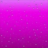 与清楚的水博士的抽象紫色和桃红色梯度背景 图库摄影