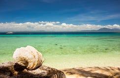 与清楚的水和贝壳的遥远的海滩 库存图片