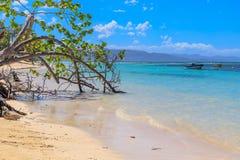 与渔船的加勒比海滩在Playa la Ensenada,多米尼克 免版税库存照片