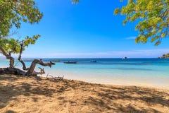 与渔船的加勒比海滩在Playa la Ensenada,多米尼克 库存图片