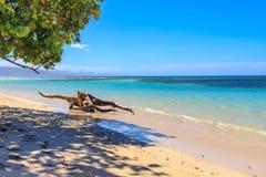 与渔船的加勒比海滩在Playa la Ensenada,多米尼克 免版税库存图片
