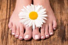 与温泉修脚和花的女性脚 图库摄影