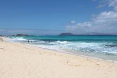 与游人的海岸线 加那利群岛西班牙 库存图片