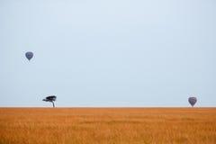 与游人的非洲大草原一个热空气气球徒步旅行队的 图库摄影
