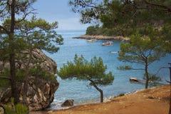 与游艇和一棵绿色杉木,土耳其, 2014年5月的海海湾 库存图片