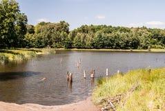 与湖、森林和蓝天的Recultivated风景与在Orlova市附近的云彩 免版税库存图片