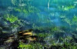 与湖反射的风景 图库摄影