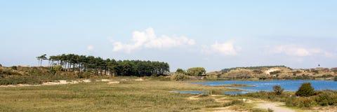 与湖和树的荷兰风景在荷兰, Kennemerduinen 免版税库存图片