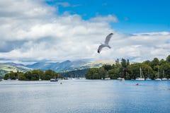 与湖和游艇的风景 库存图片