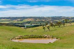 与湖和绵羊的Beautyful风景 蓝色乡下空的路场面天空 免版税库存图片