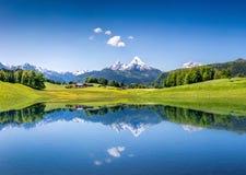 与湖的田园诗夏天风景在阿尔卑斯 库存图片