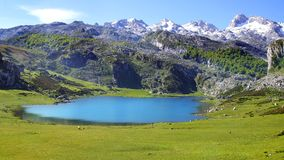 与湖的美丽如画的自然风景 免版税库存照片