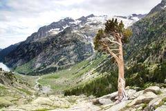 与湖的美丽如画的自然风景 免版税库存图片