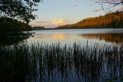 与湖的风景在森林里 免版税库存图片