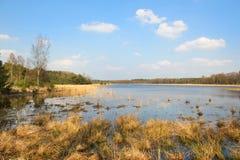 与湖的风景 免版税库存照片