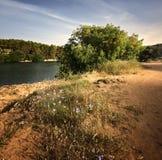 与湖的风景 免版税库存图片
