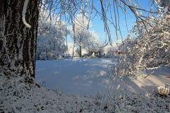与湖荷兰的雪风景 库存图片