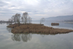 与湖1的风景 库存照片
