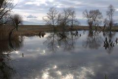 与湖2的风景 免版税库存照片