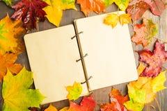 与湿槭树叶子和开放笔记本的秋天概念在中心 免版税图库摄影
