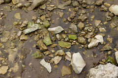 与湿石头的河沿在沙子 库存照片