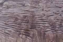 与湿黑泥沙沙子泥的冰河河岸岸 免版税库存照片
