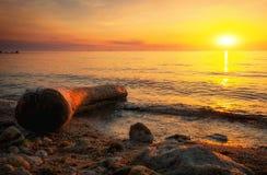 与漂流木头、海和日落天空的美好的风景 库存图片