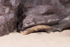 与漂流木头和海沙的人为岩石 库存图片