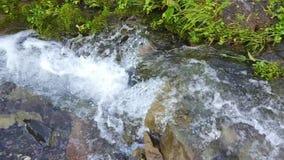 与瀑布的山小河 关闭瀑布在河 股票视频