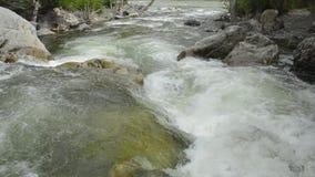 与瀑布的美丽的山小河,伟大的Ilgumen小河 股票视频
