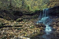 与瀑布的美好的风景在秋天森林& x28里; harmo 库存图片
