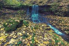 与瀑布的美好的风景在秋天森林vinta 免版税图库摄影