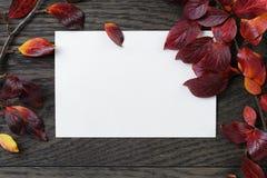 与灌木叶子和纸牌的秋天背景在老桌上 库存图片