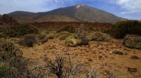 与灌木天空沙子的火山视图 库存图片