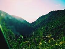 与灌木的莱夫卡斯州谷 免版税图库摄影