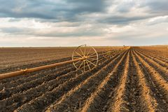 与灌溉系统的土豆领域,在播种之后 免版税图库摄影