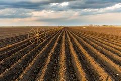与灌溉系统的土豆领域,在播种之后 免版税库存照片